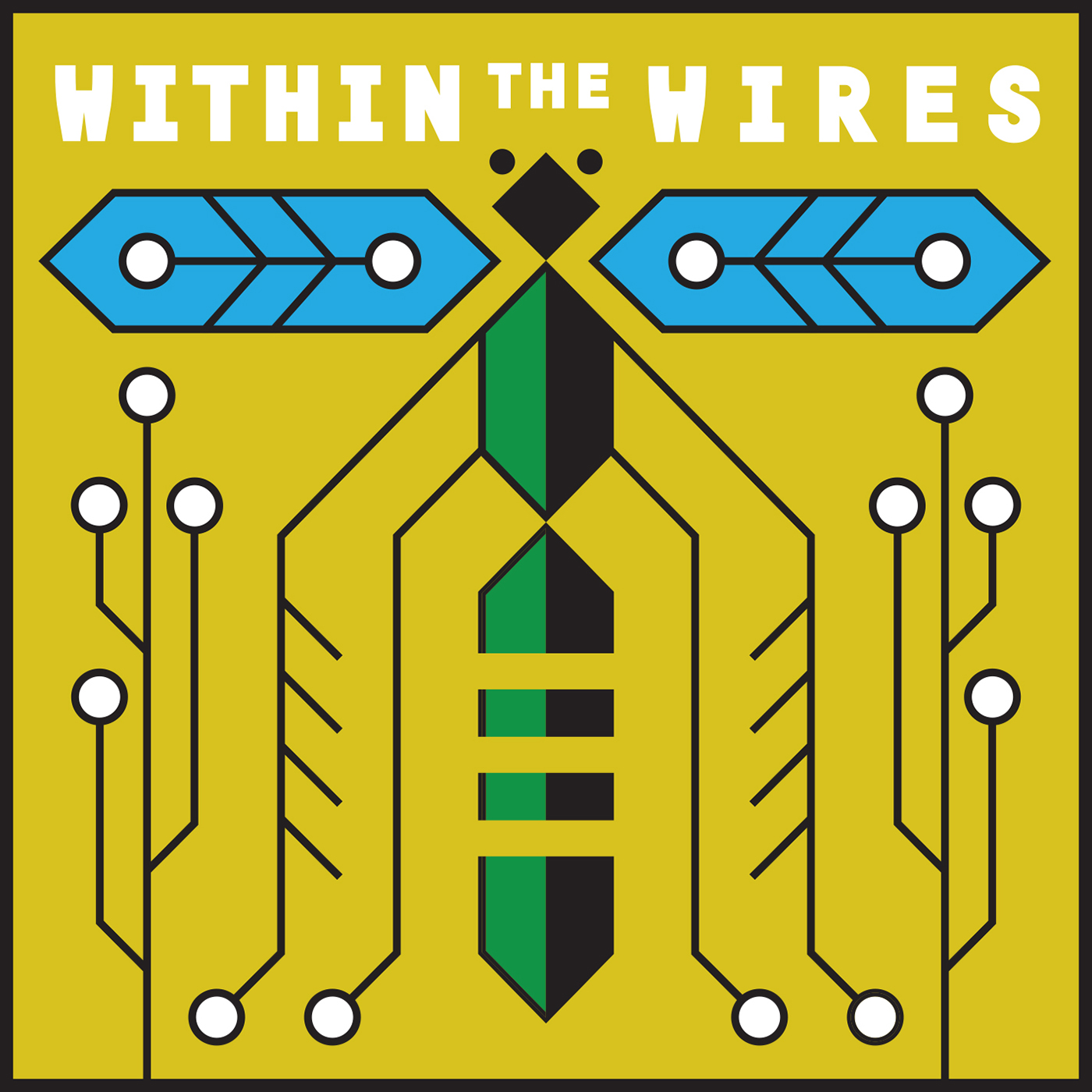 """""""Within the Wires"""" Podcast"""